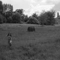 paysage_16